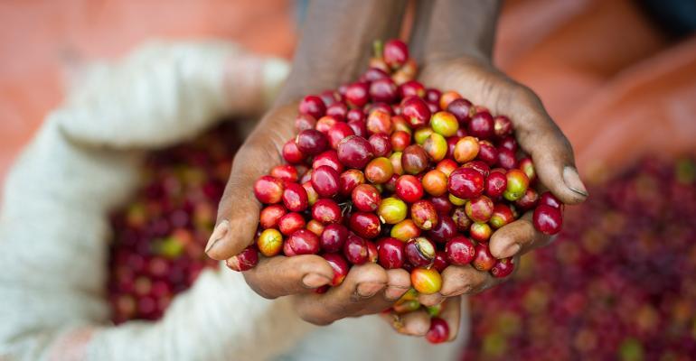 fair-trade-02.jpeg