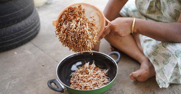 the-alternative-protein-landscape-India.jpg