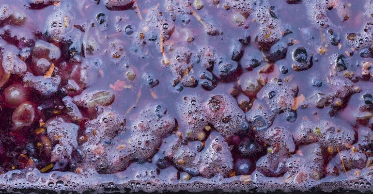transforming-wine-waste-into-a-polyphenol-packed-powder-01.jpeg