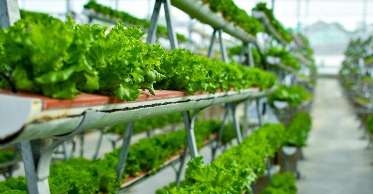 vertical-farms-01.jpeg